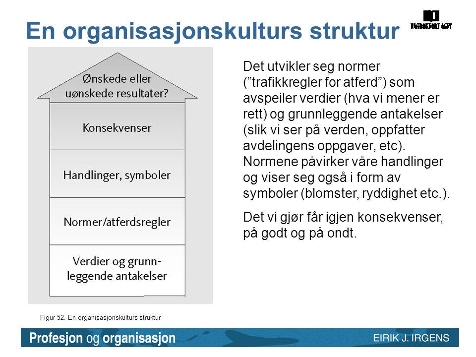 En organisasjonskulturs struktur