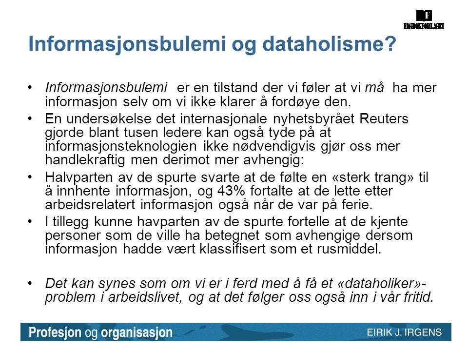 Informasjonsbulemi og dataholisme