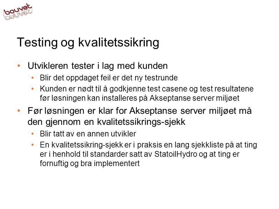 Testing og kvalitetssikring