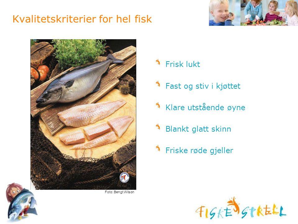 Kvalitetskriterier for hel fisk