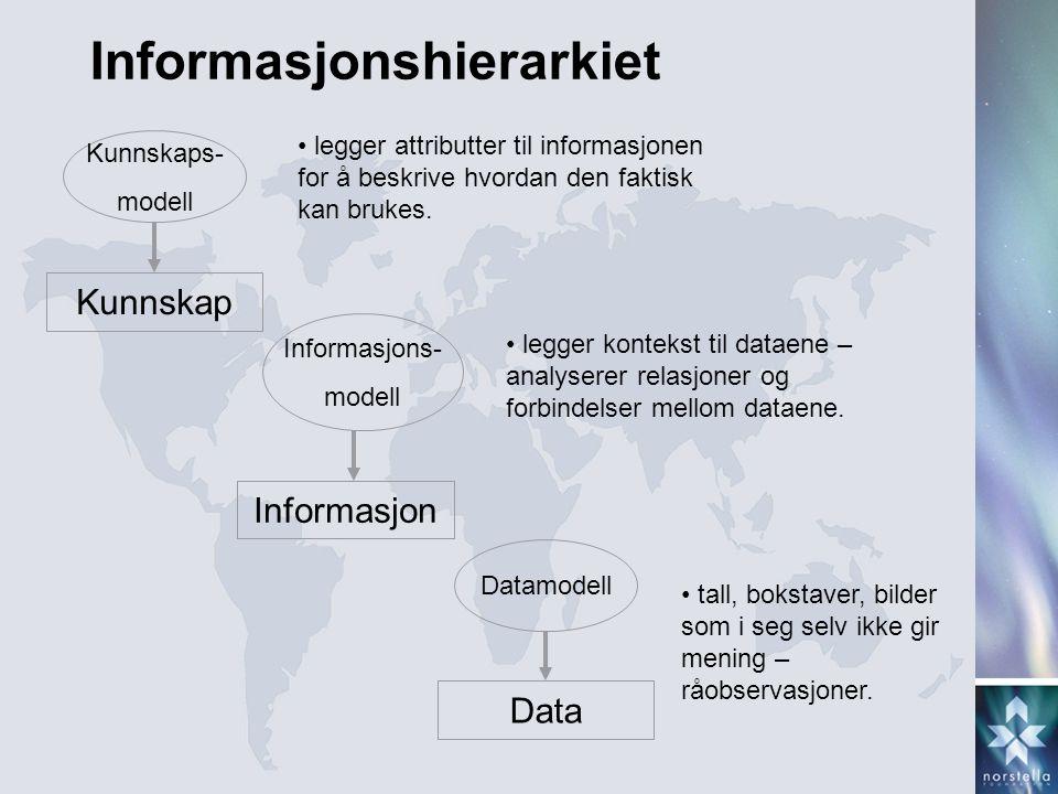 Informasjonshierarkiet
