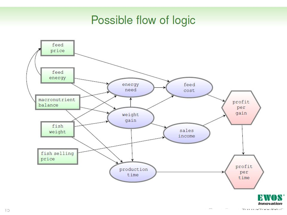 Shows the modelling logic used to derive profit per gain and profit per time. On the left in green boxes