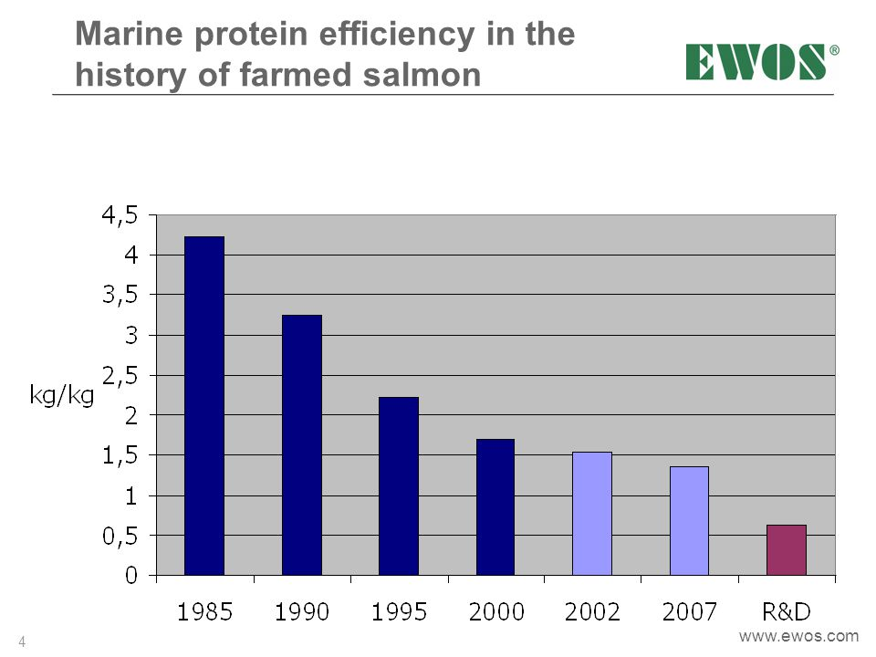 Marine protein efficiency in the history of farmed salmon