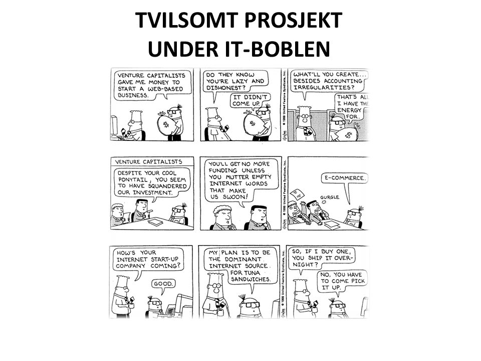 TVILSOMT PROSJEKT UNDER IT-BOBLEN
