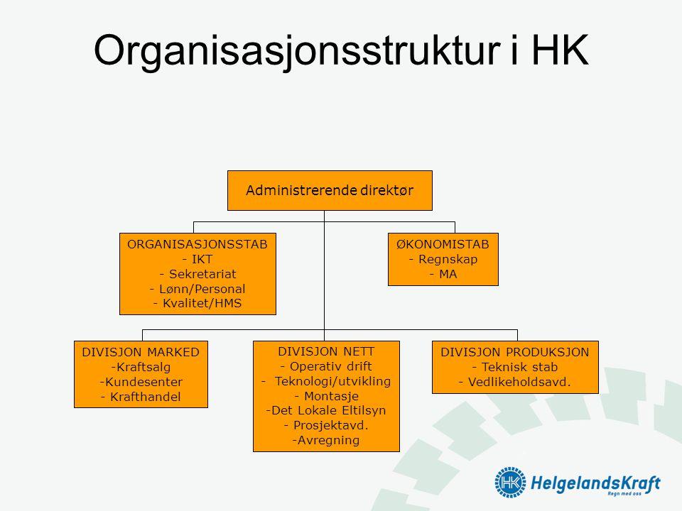 Organisasjonsstruktur i HK