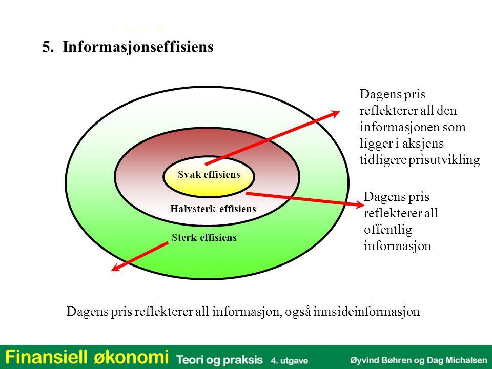 5. Informasjonseffisiens