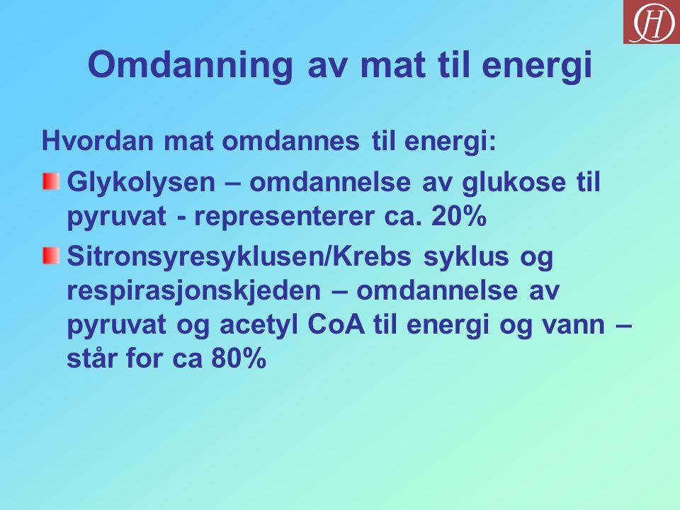 Omdanning av mat til energi