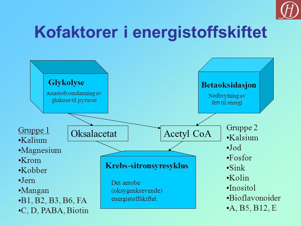 Kofaktorer i energistoffskiftet