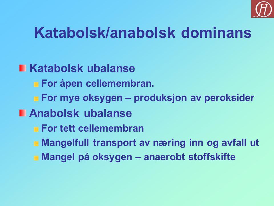 Katabolsk/anabolsk dominans