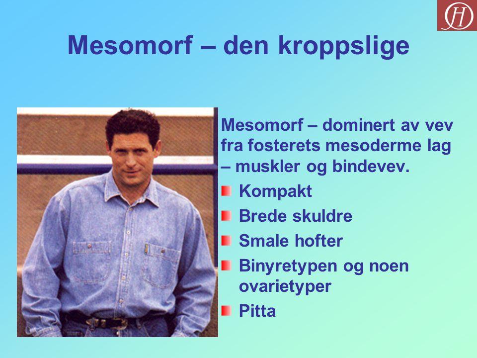 Mesomorf – den kroppslige