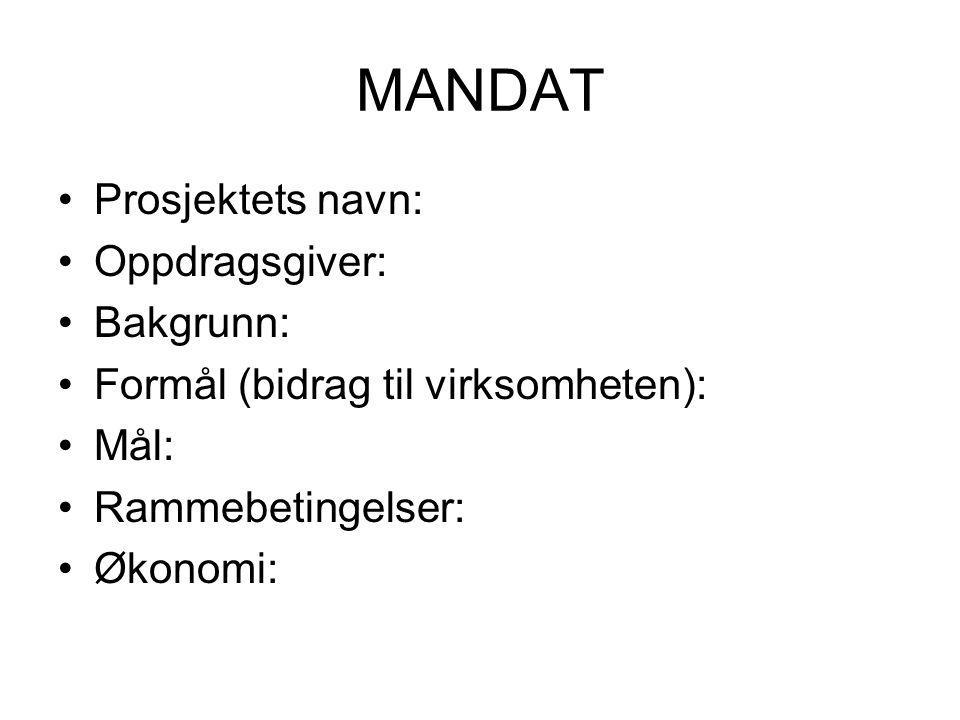 MANDAT Prosjektets navn: Oppdragsgiver: Bakgrunn: