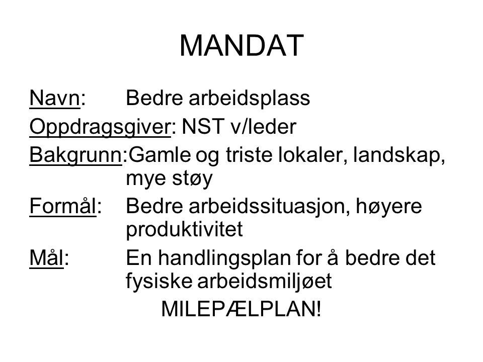 MANDAT Navn: Bedre arbeidsplass Oppdragsgiver: NST v/leder
