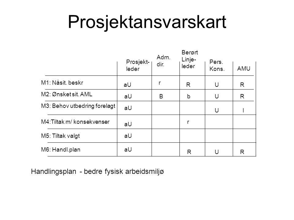 Prosjektansvarskart Handlingsplan - bedre fysisk arbeidsmiljø Berørt