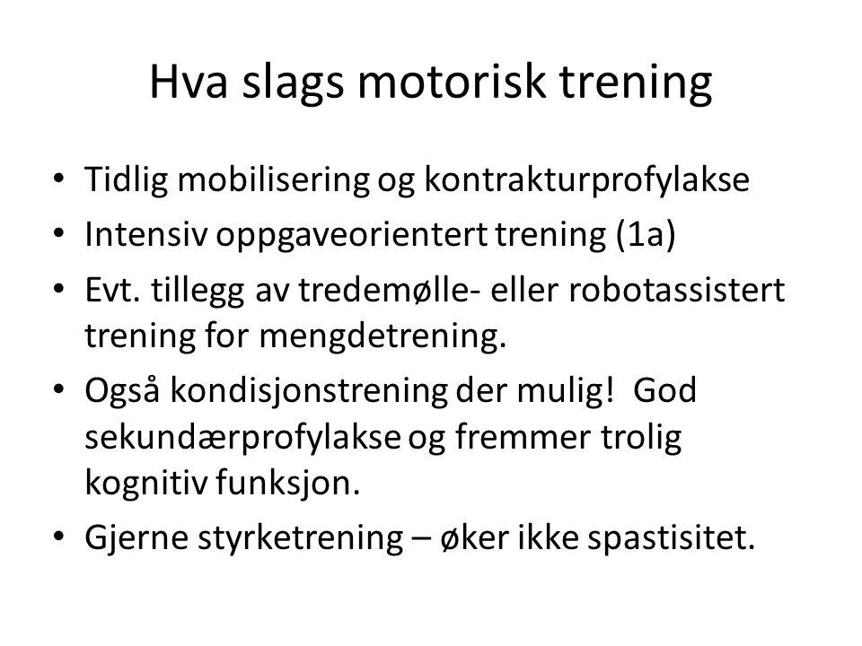 Hva slags motorisk trening