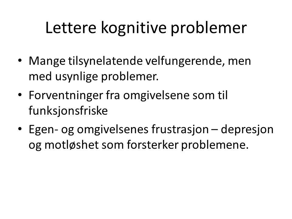 Lettere kognitive problemer