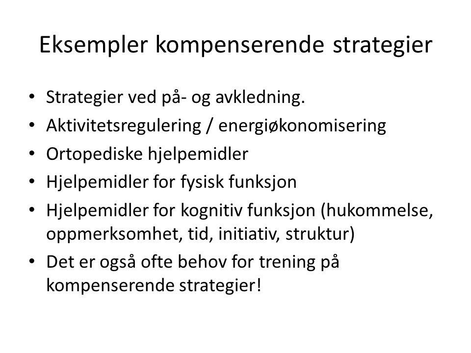 Eksempler kompenserende strategier