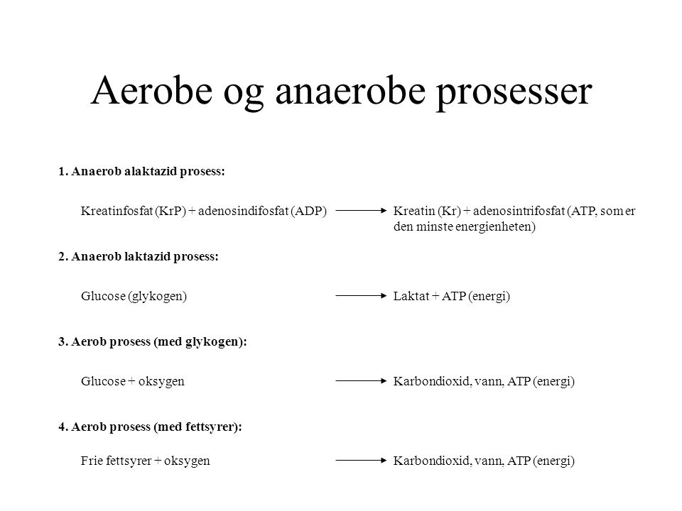 Aerobe og anaerobe prosesser