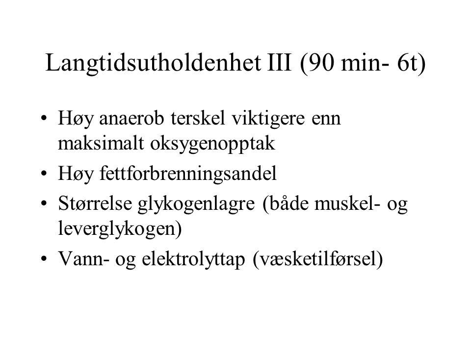Langtidsutholdenhet III (90 min- 6t)