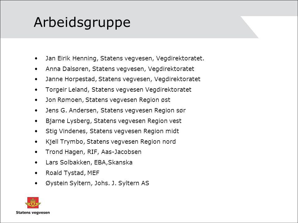Arbeidsgruppe Jan Eirik Henning, Statens vegvesen, Vegdirektoratet.