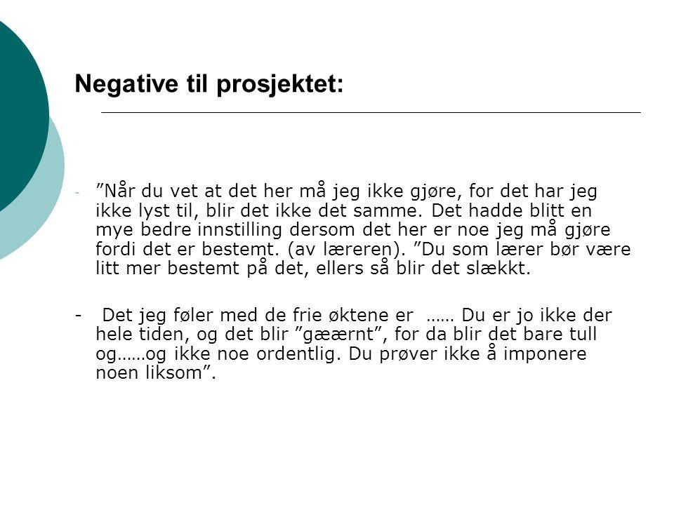 Negative til prosjektet: