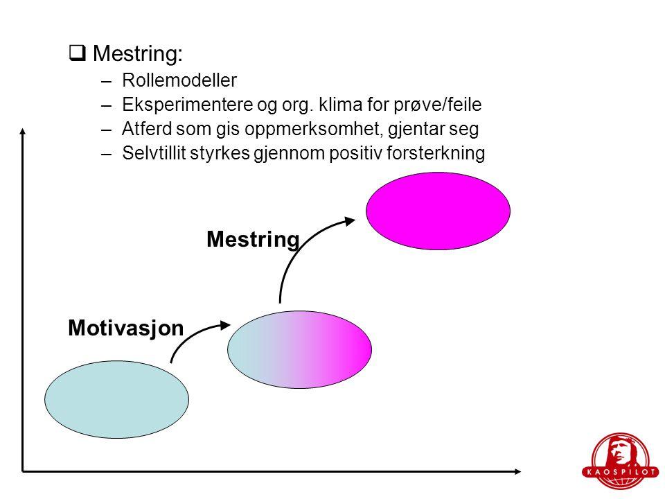 Mestring: Mestring Motivasjon Rollemodeller