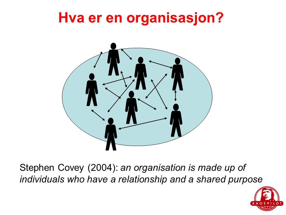 Hva er en organisasjon.