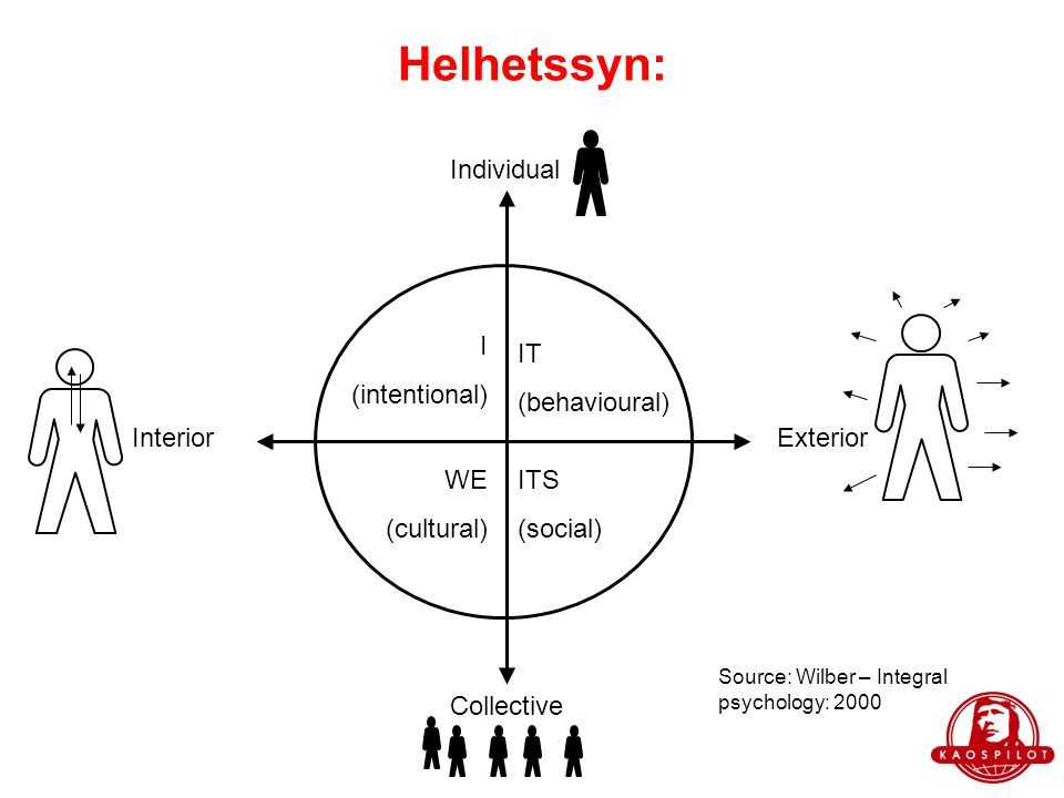 Helhetssyn: Individual I (intentional) IT (behavioural) Interior