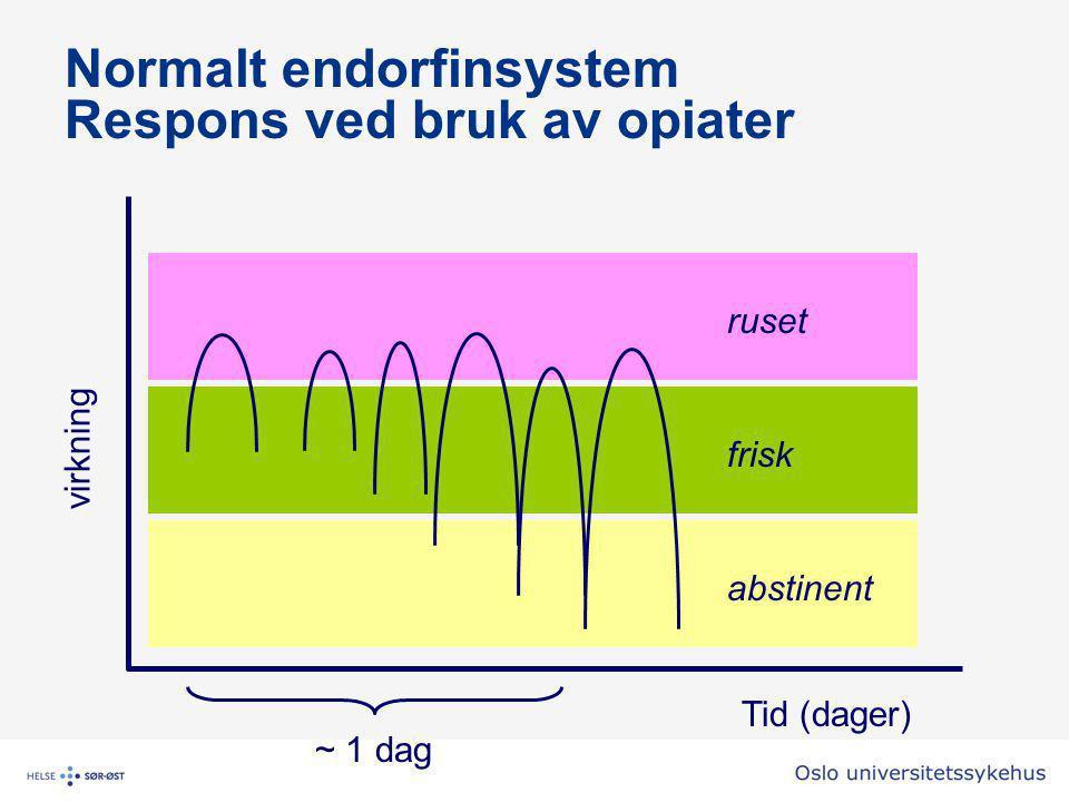 Normalt endorfinsystem Respons ved bruk av opiater