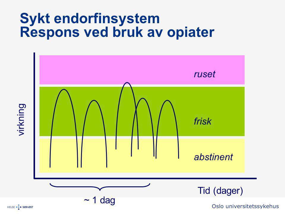 Sykt endorfinsystem Respons ved bruk av opiater