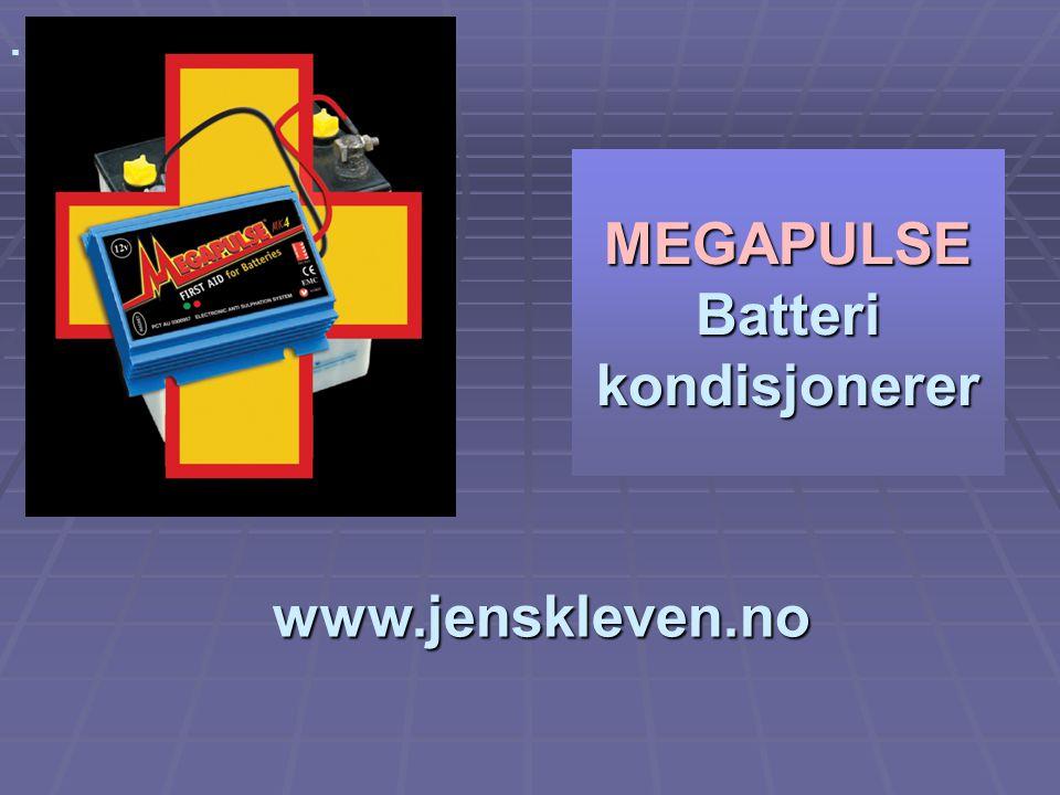 MEGAPULSE Batteri kondisjonerer