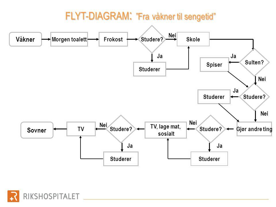 FLYT-DIAGRAM: Fra våkner til sengetid