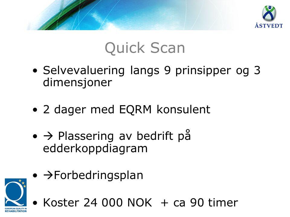 Quick Scan Selvevaluering langs 9 prinsipper og 3 dimensjoner