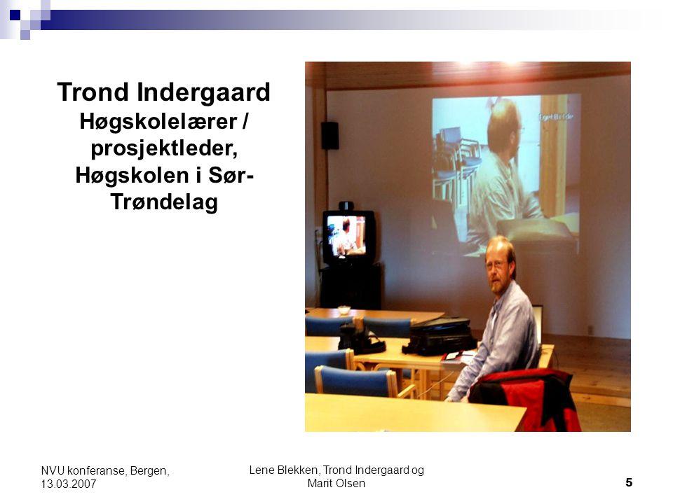 Høgskolelærer / prosjektleder, Høgskolen i Sør-Trøndelag