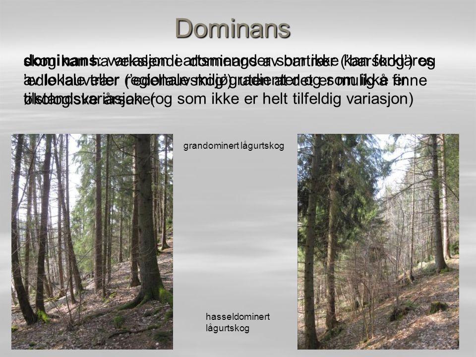 Dominans skog kan ha vekslende dominans av bartrær ('barskog') og 'edle lauvtrær ('edellauvskog') uten at det er mulig å finne økologiske årsaker.