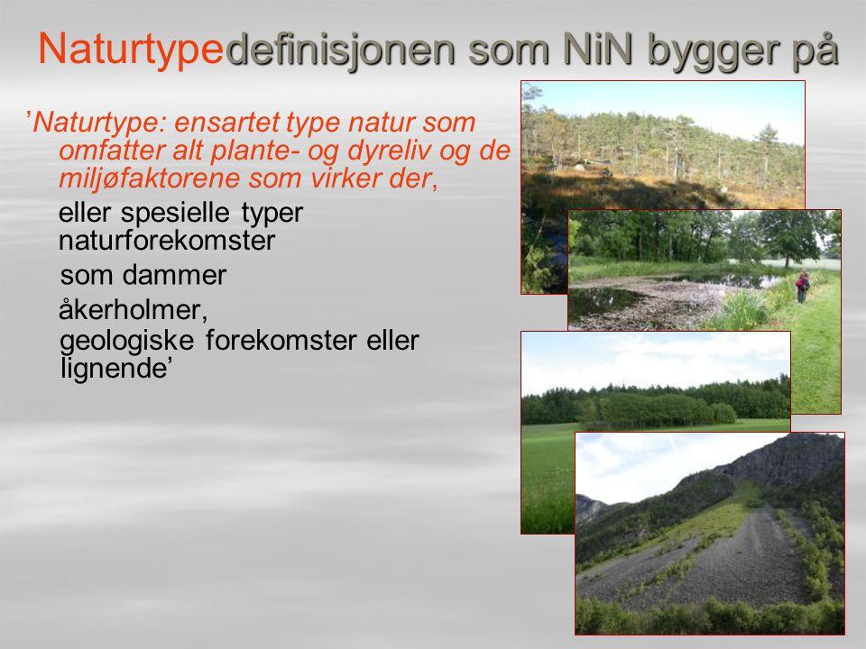Naturtypedefinisjonen som NiN bygger på
