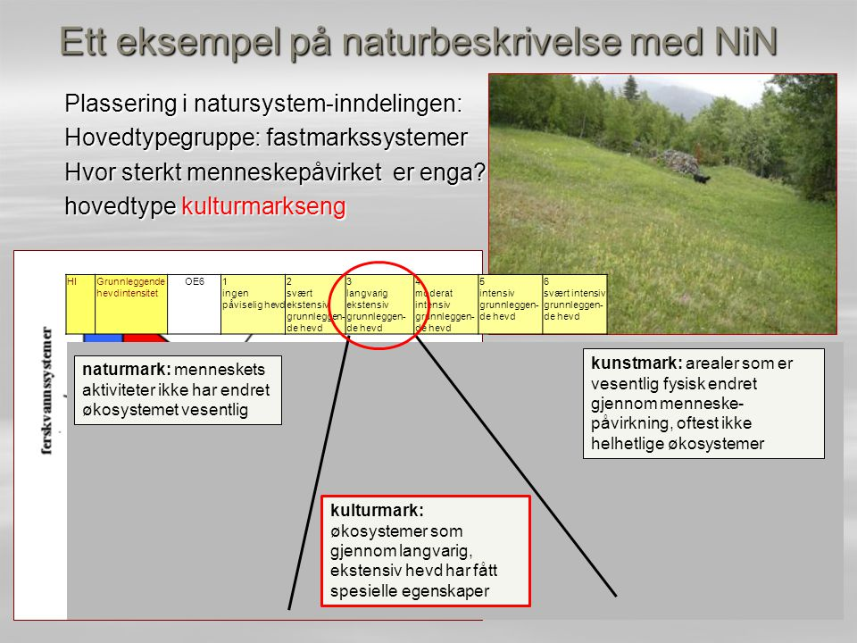 Ett eksempel på naturbeskrivelse med NiN