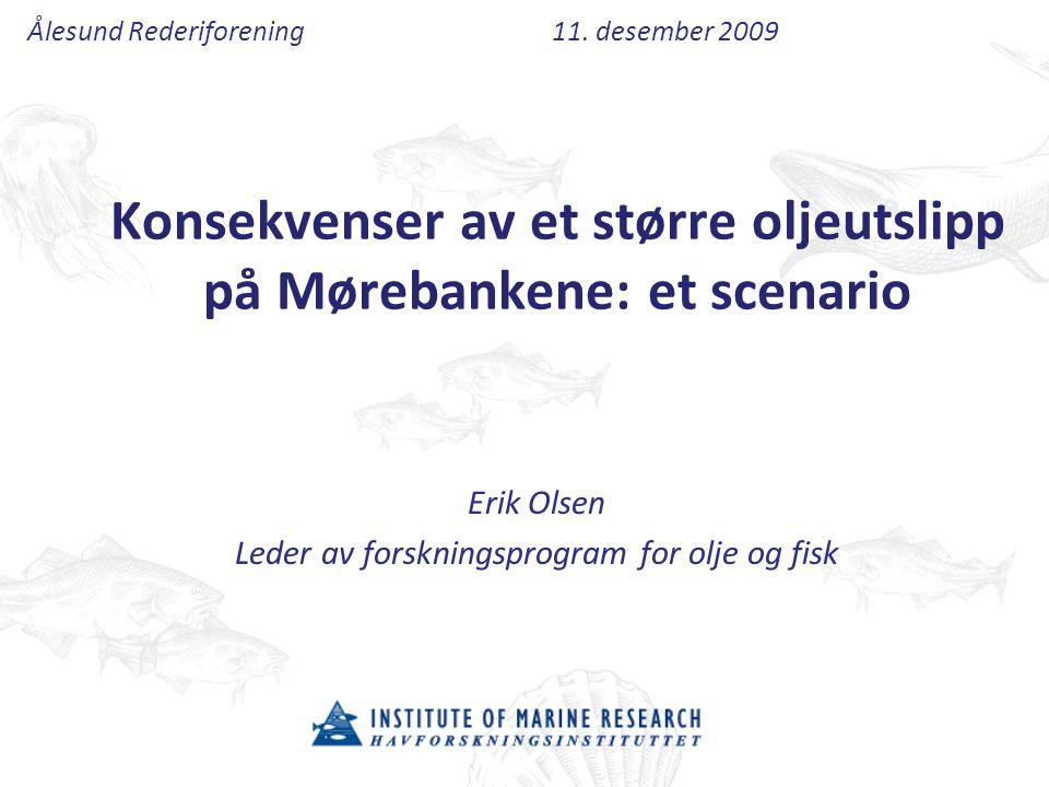 Konsekvenser av et større oljeutslipp på Mørebankene: et scenario