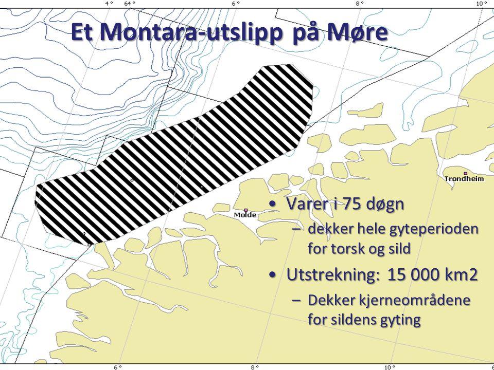 Et Montara-utslipp på Møre