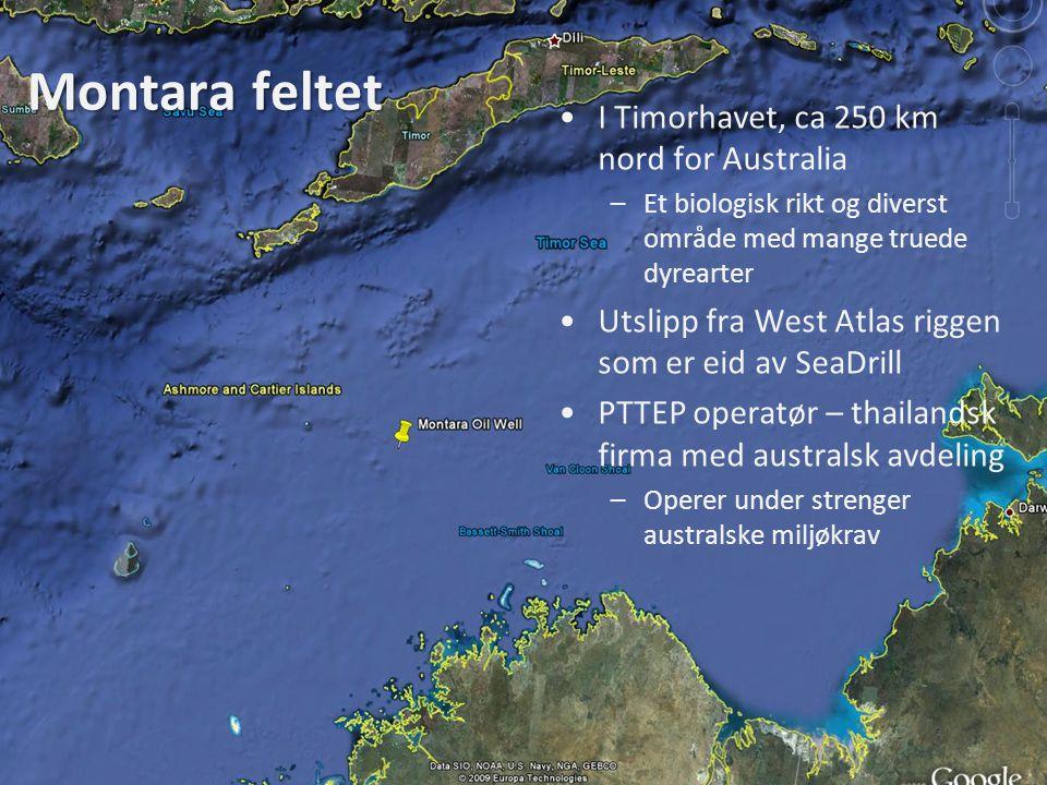 Montara feltet I Timorhavet, ca 250 km nord for Australia