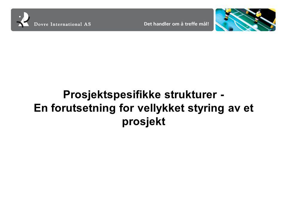 Prosjektspesifikke strukturer - En forutsetning for vellykket styring av et prosjekt