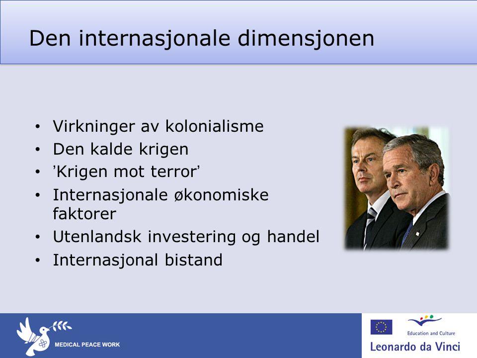 Den internasjonale dimensjonen