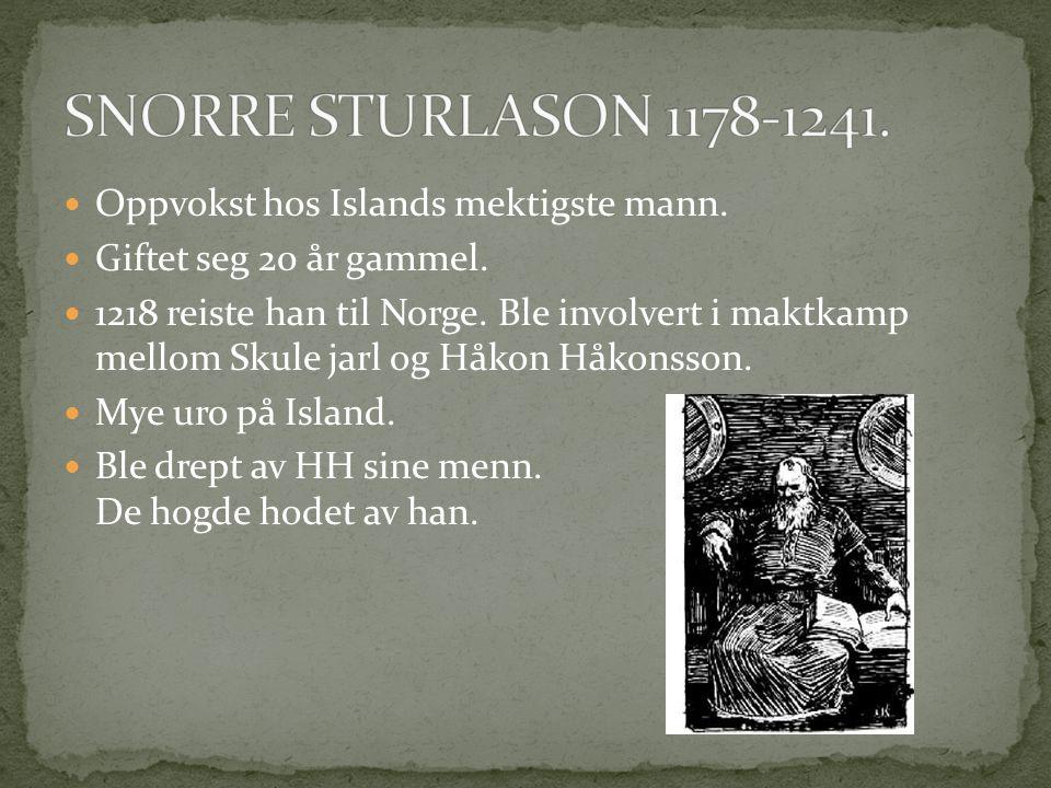 SNORRE STURLASON 1178-1241. Oppvokst hos Islands mektigste mann.