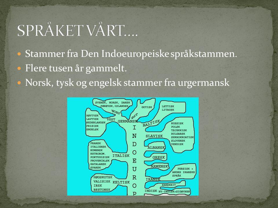 SPRÅKET VÅRT…. Stammer fra Den Indoeuropeiske språkstammen.