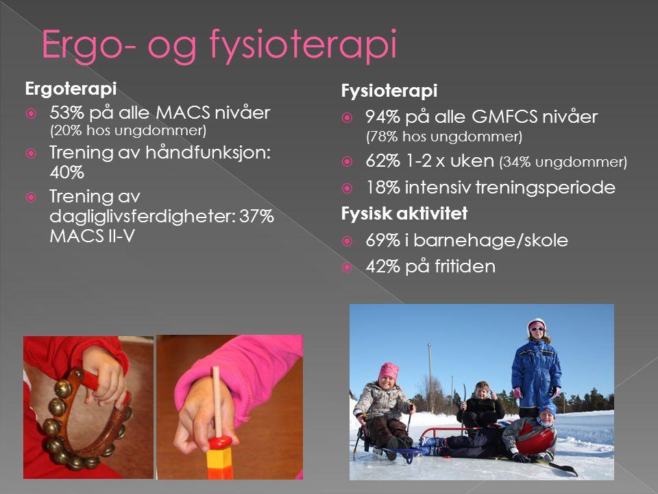 Ergo- og fysioterapi Ergoterapi