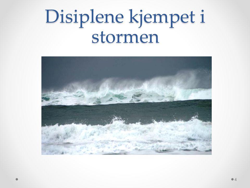 Disiplene kjempet i stormen