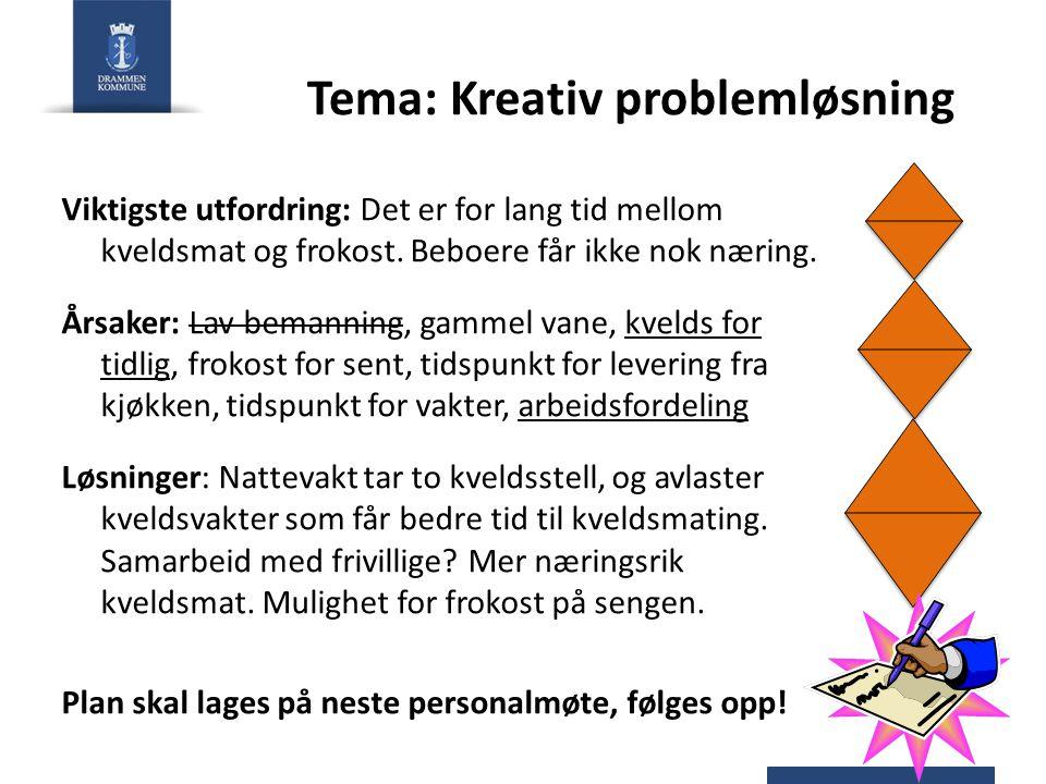 Tema: Kreativ problemløsning