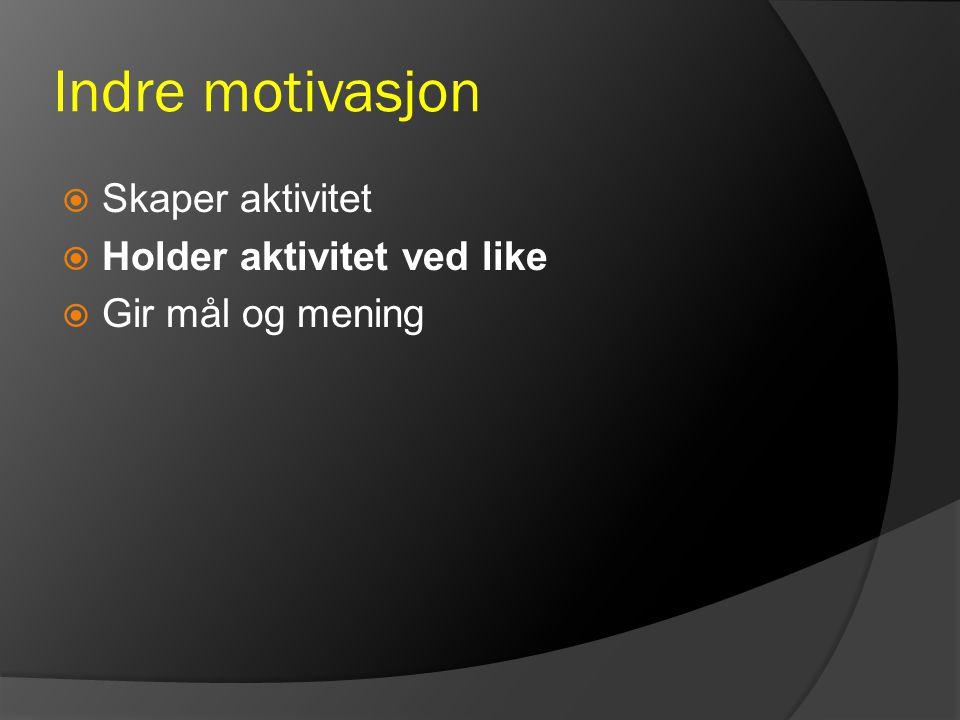 Indre motivasjon Skaper aktivitet Holder aktivitet ved like