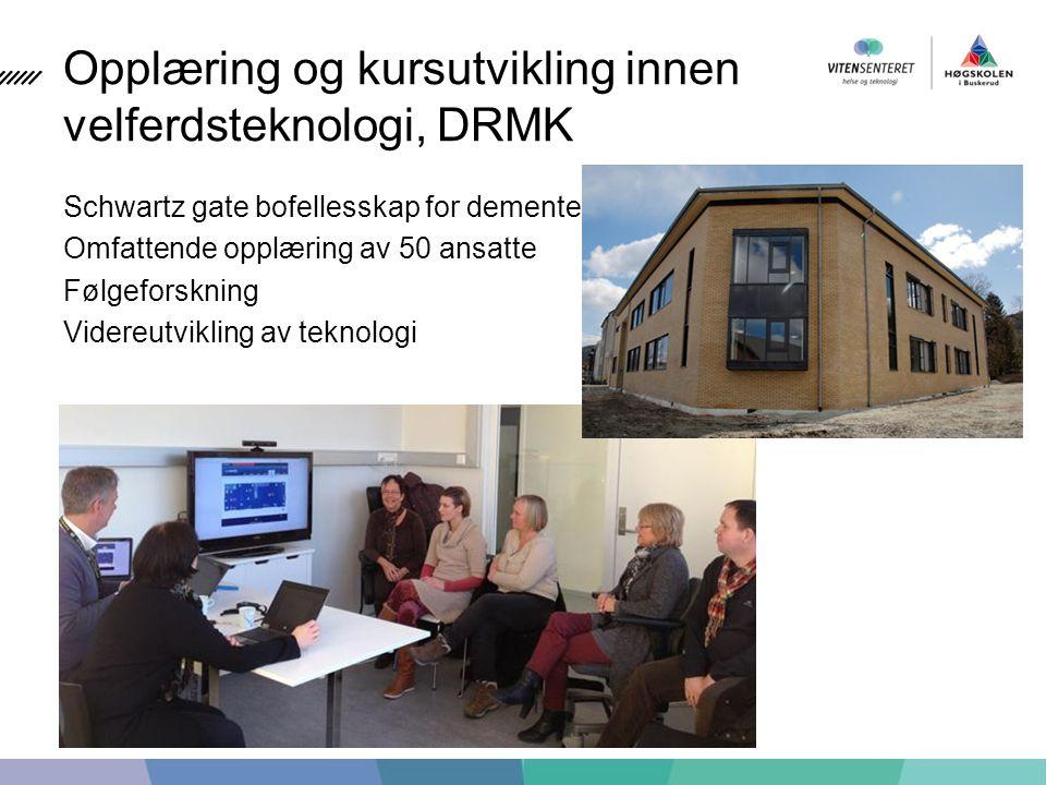Opplæring og kursutvikling innen velferdsteknologi, DRMK