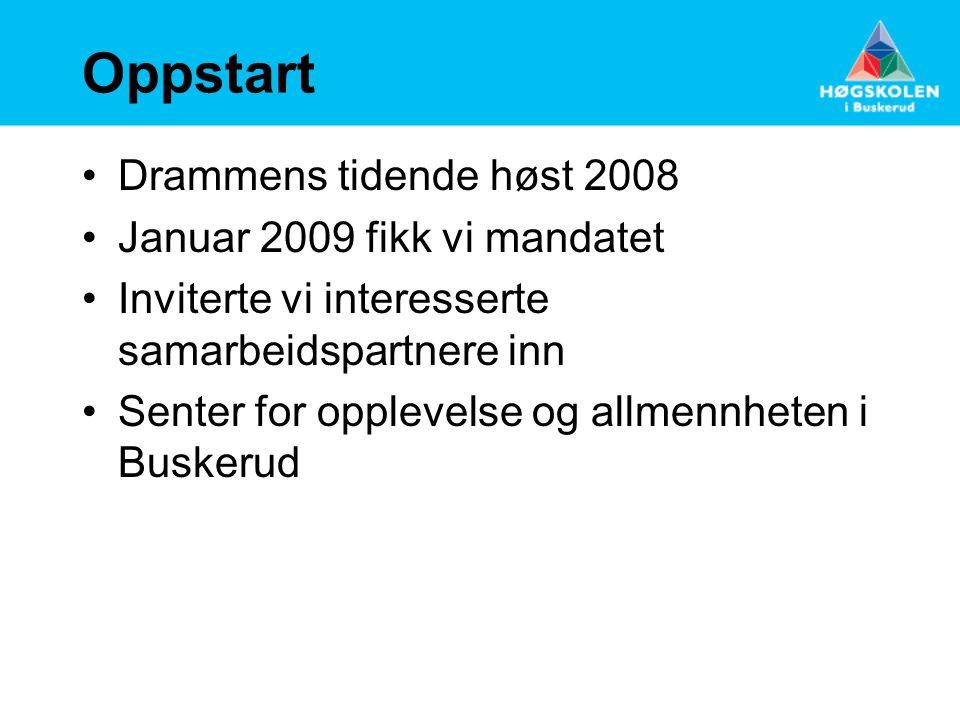 Oppstart Drammens tidende høst 2008 Januar 2009 fikk vi mandatet