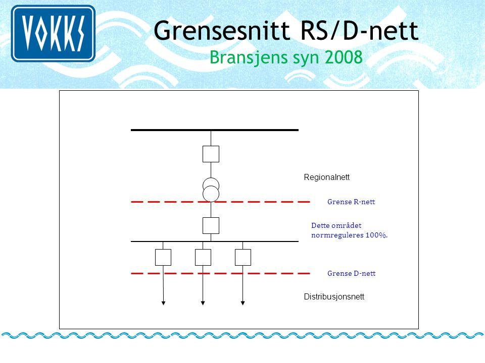 Grensesnitt RS/D-nett Bransjens syn 2008